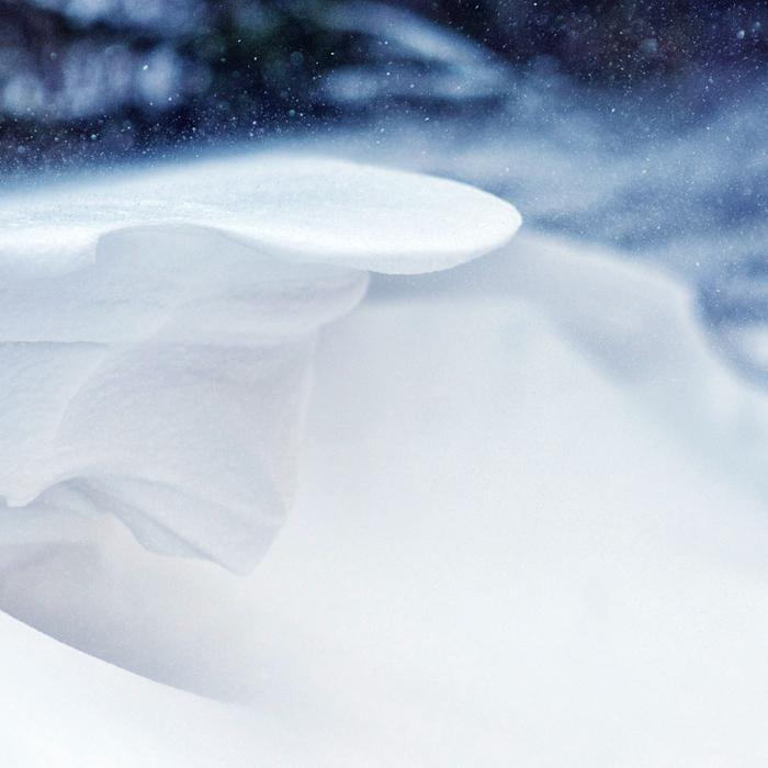 Frozen Pandora