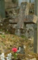 Still life picture, old cross, cemetery in Vilnius