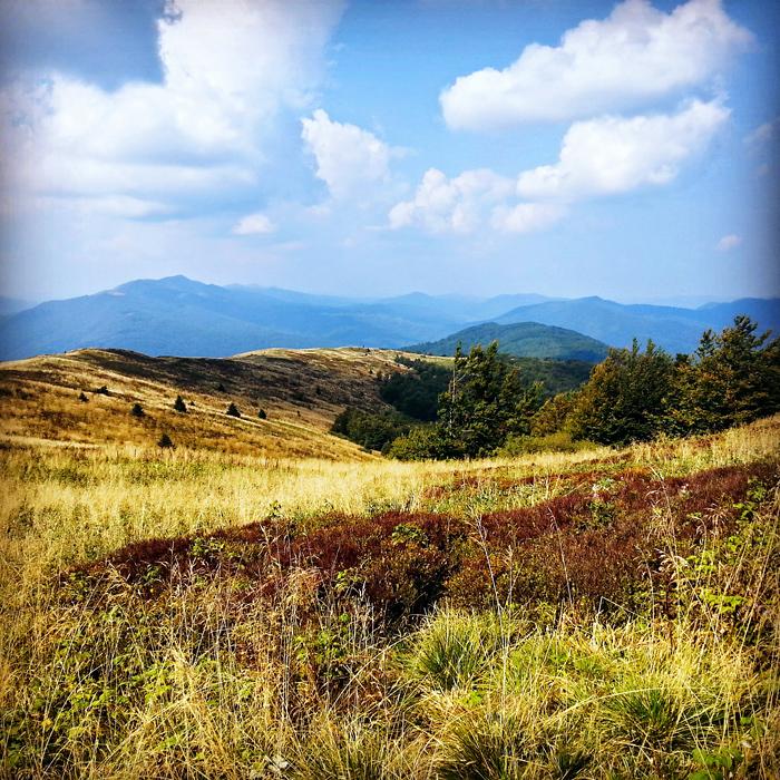 Panorama Bieszczad z Bukowego Berda