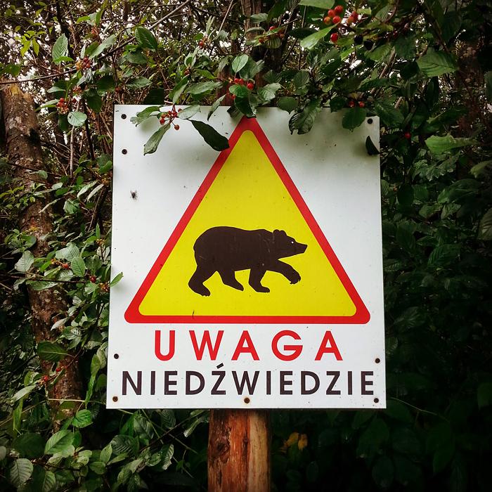 Uwaga Niedźwiedzie