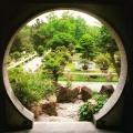 Chiński ogród i Brama Księżyca