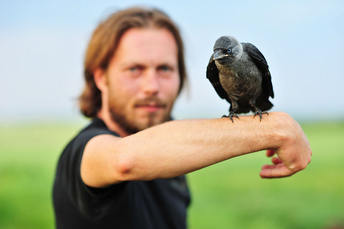 Zaklinacz ptaków